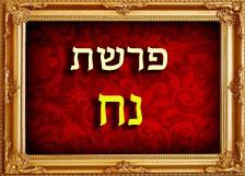 הרב רוזנבלום פרשת נח