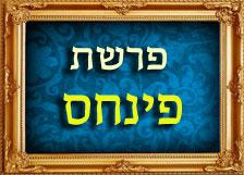 הרב רוזנבלום פרשת פינחס