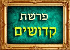 הרב רוזנבלום פרשת קדושים