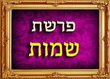 הרב רוזנבלום פרשת שמות