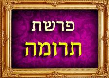 הרב רוזנבלום פרשת תרומה
